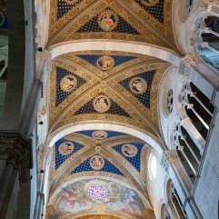 Lucca cathedral ceiling