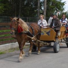 Voronet taxi